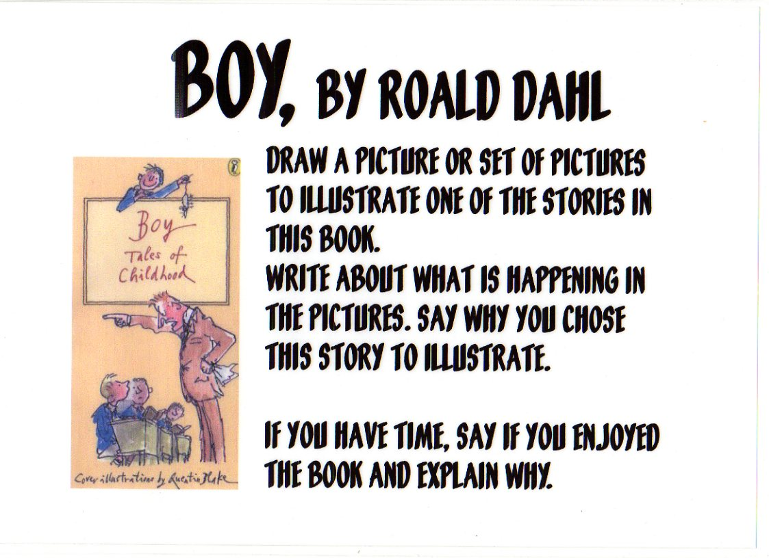 roald dahl boy book report